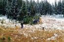 1861 GRPT Hike to Bald-Groundhog Lake (3) - 1995