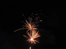 FOB Annual Donation to Barkerville Fireworks